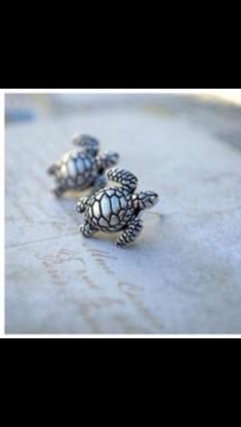jewels earrings turtle studs