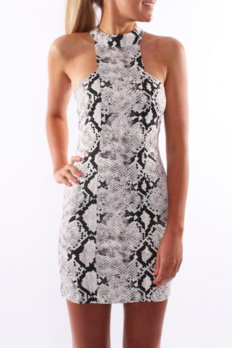 dress snake print bodycon dress mini dress