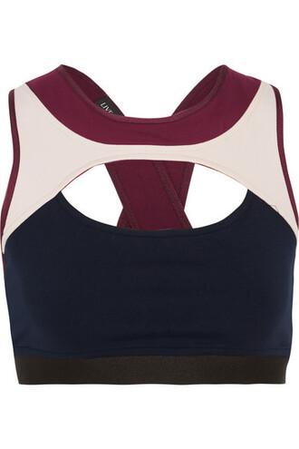 bra sports bra plum underwear