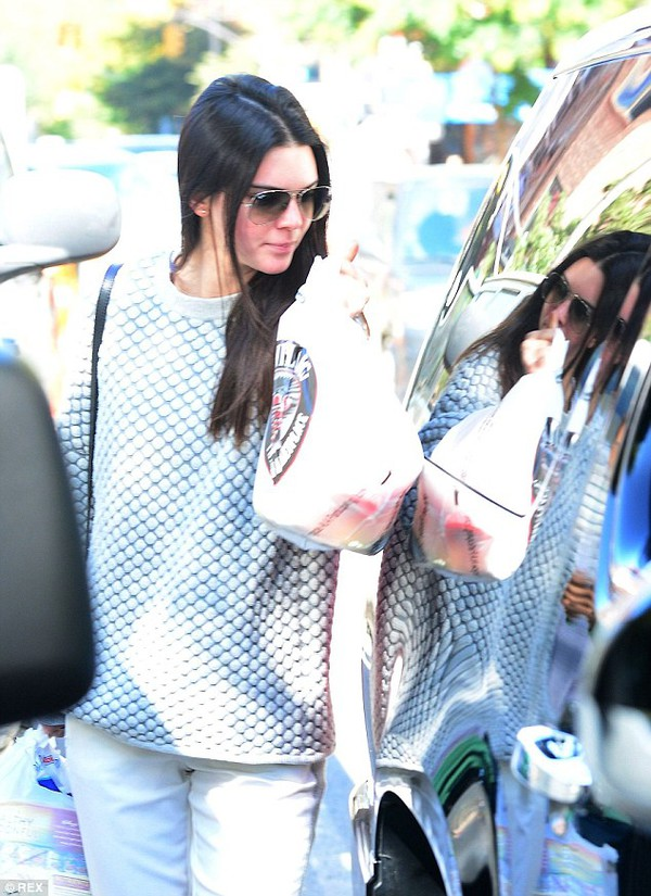 kendall jenner sweater