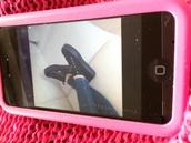 shoes,superga