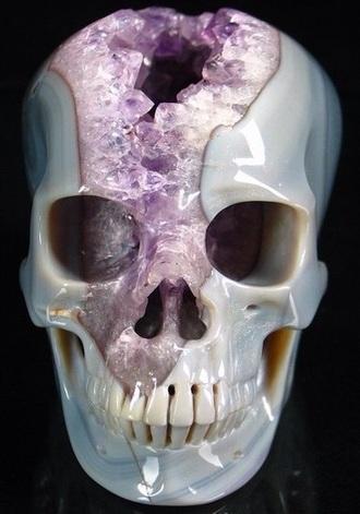 home accessory crystal skull crystal skull hipster