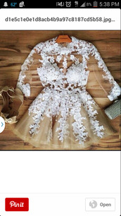 lace dress,dress,whitw,see through dress,invisible,floral dress,gorgeous dress,elegant dress,fancy dress,nude dress,white dress,prom dress,cute dress,short dress,white lace dress,petals,champagne dress,white,see through,skater dress,long sleeves,nude lace dress,party dress,embroidered