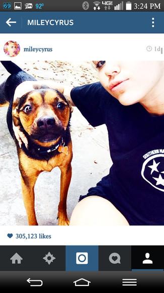 dog miley cyrus black shirt t-shirt