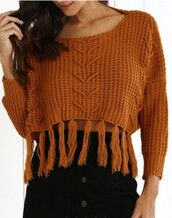 sweater,long sleeves,knitwear,brown,fashion,trendy,crop tops,zaful