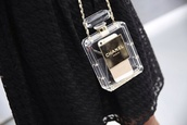 jewels,chanel,iphone 4 case,giveme,elegant,oh wow,ipadiphonecase.com,bag