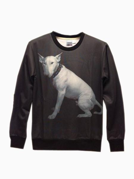 Bull Terrier Printed Sweatershirt | Choies