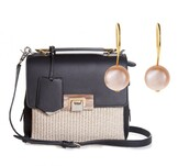 a portable package,blogger,pearl,earrings