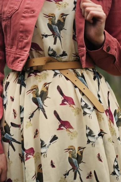 red jacket dress birds white pattern patterned dress