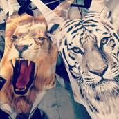 swimwear,lion,tiger,animal face print,jumpsuit