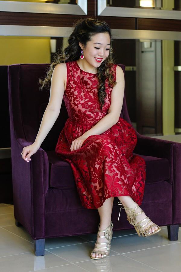 5668cddd085e Boutique Aria Embroidered Organza Skater Dress