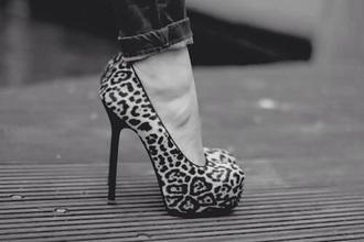 shoes leopard print black heeled high heels