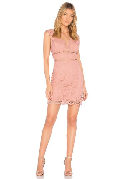 J.O.A. dress lace dress back open open back lace rose