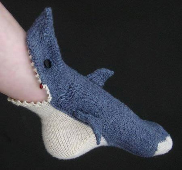 underwear cute shark ssea surf summer winter outfits fall outfits swimwear animal fluffy warm