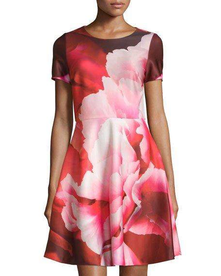 54e5c6ca9b Julia Jordan Floral-Print Short-Sleeve Fit   Flare Dress