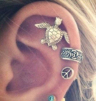 jewels jewelry earrings turtle