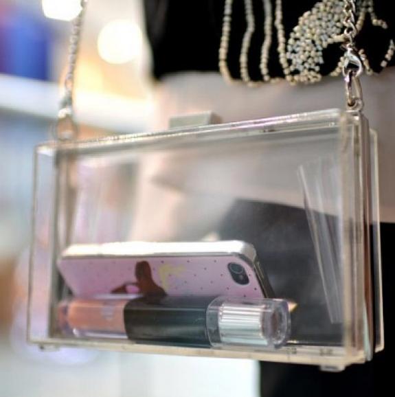 Transparent Clutch Bag