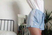adidas,fit,cozy,stripes,shorts,style,fitness,blue shorts,pastel short,short adidas,adidas women,pastel,blue pastel,blue adidas,blue,tumblr,pale,scarf,girl,cute,neutral