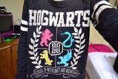 sweater,harry potter,gryffondor,hogwarts,jacket,shirt,ravensclaw,daniel radcliff,hogwarts sweatshirt,slytherin,gryffindore,hufflepuff,gryffindor,ravenclaw,cute sweaters