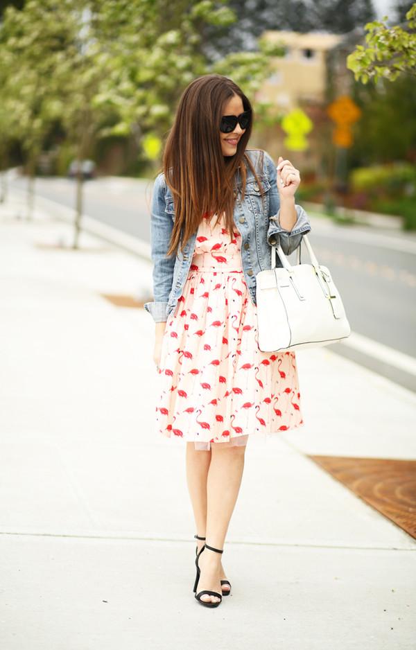 6735d0e7e80a8 dress corilynn blogger dress jacket shoes bag sunglasses