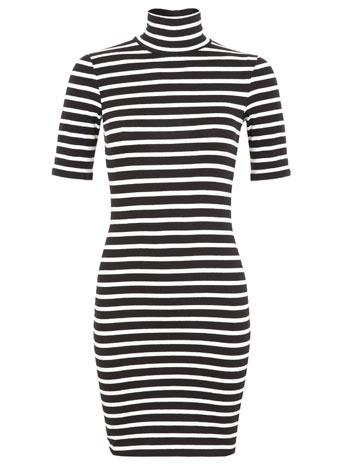 Petites stripe roll neck dress