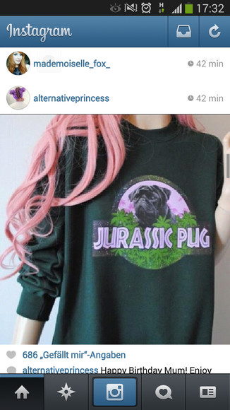 sweater dog pug jurassic pug