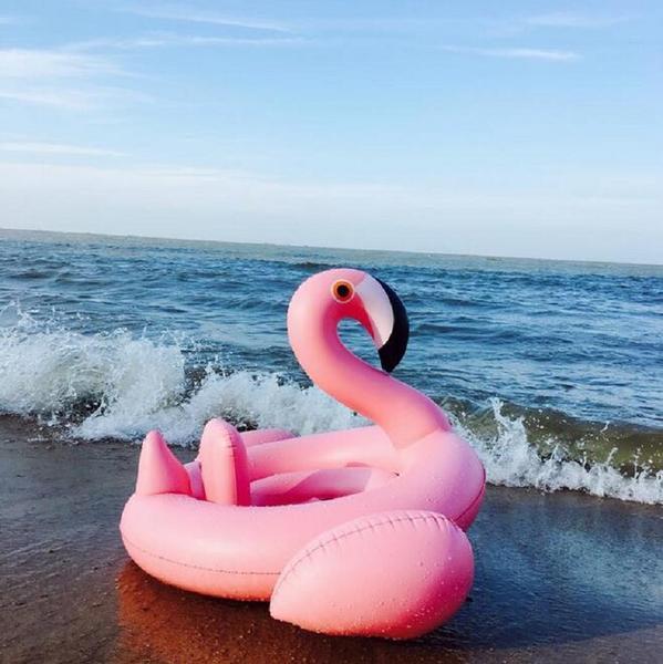 Flamingo / Swan Pool Toy