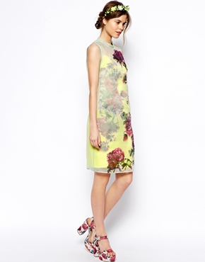 ASOS | ASOS SALON Shift Dress In Organza With Applique Flowers at ASOS