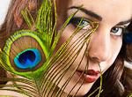 Plume : vente en ligne de plumes, plume dã©coration, plume mariage, plume ornement, mariage, voilette, sisal, fourniture chapeau, modiste, coiffe