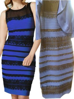 Blue/black or white/gold lace detail bodycon dress