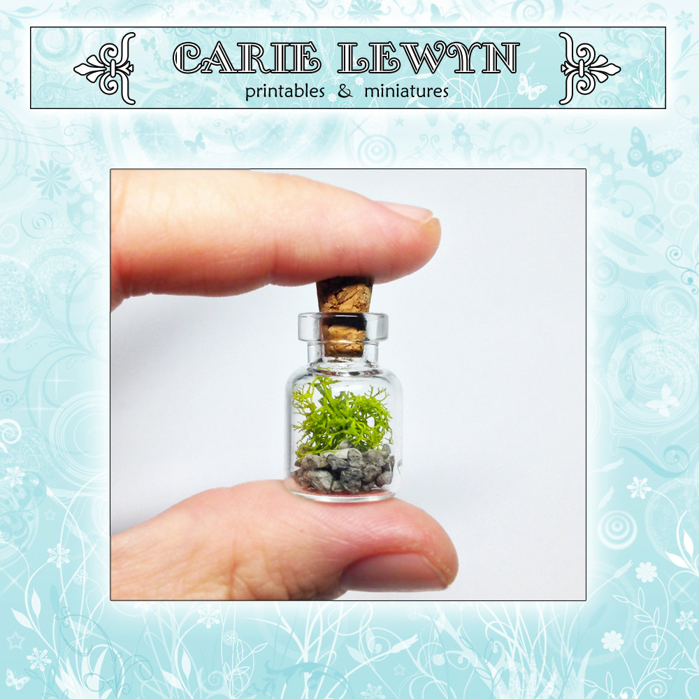 Mini Terrarium / Tiny Glass Vial, Cork, Reindeer Moss / Necklace ...
