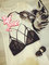 Lace bralettes, 2 designs, sexy bra, lingerie