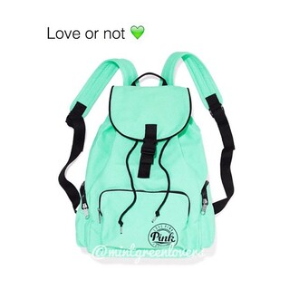 bag mint satchel