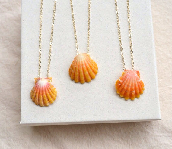 Lei Pukana La- Sunrise shell necklace floating on 14k gold fill, rose gold, or sterling silver