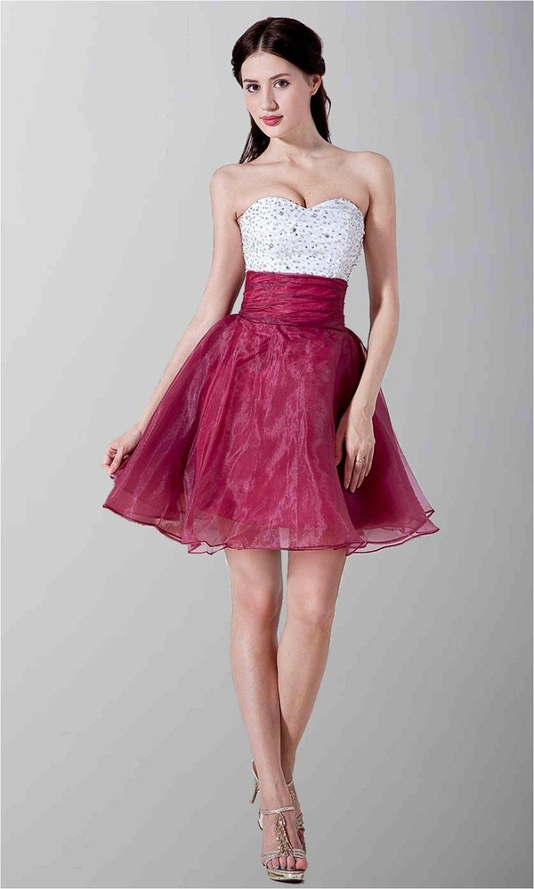 wine and white dress short prom dress corset dress organza dress dress two color dress princess dress