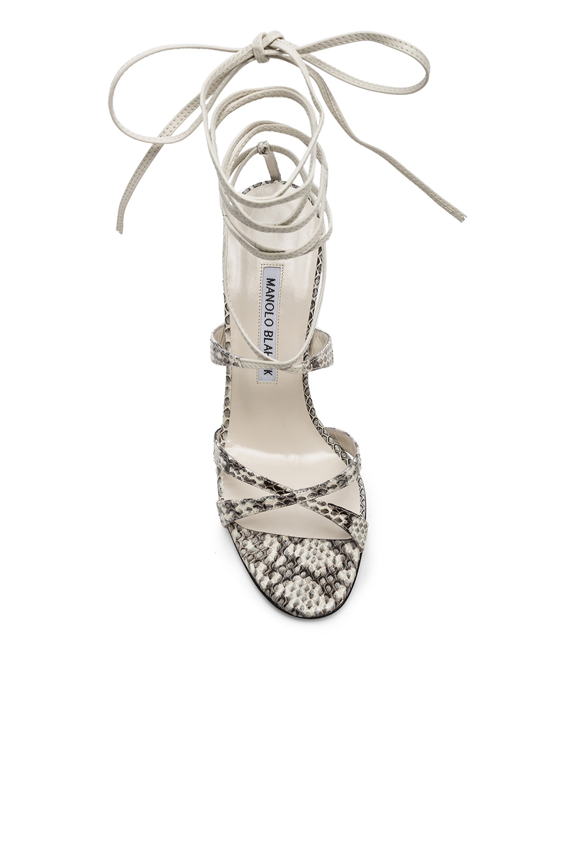 Manolo Blahnik Criss 105 Sandals in Black & White Natural Watersnake | FWRD