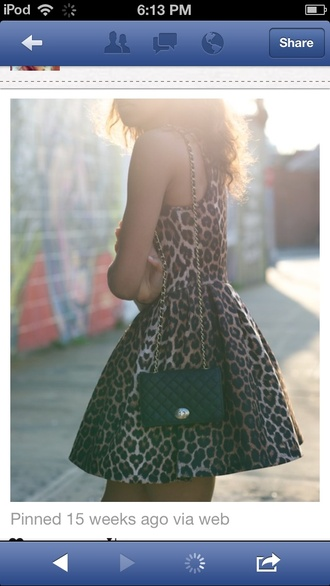 dress leopard print skater dress crossbody bag short dress racerback