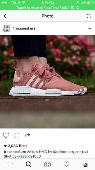 shoes pink sneakers adidas