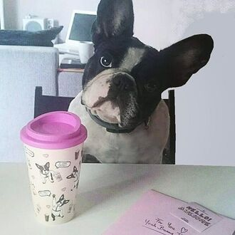 home accessory yeah bunny tumbler pink cute coffee dog frenchie sweet mug