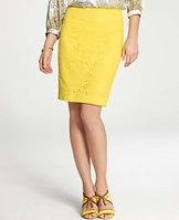 Tall Lace Cutout Pencil Skirt | Ann Taylor