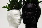 home accessory,plants,head,vase,pot,grunge,home decor,vases