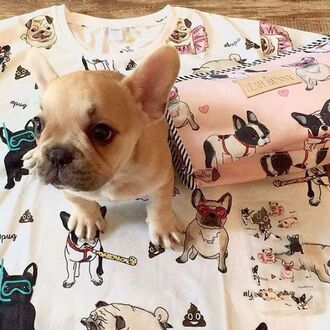 t-shirt yeah bunny pugs dog dog print tumblr frenchie dogs