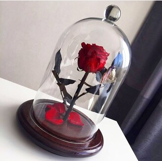 home accessory beauty and the beast rose