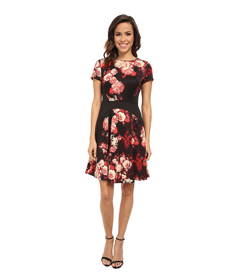 Adrianna papell printed scuba color block dress