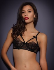Full cup, demi cup, 1/4 cup & lace bras