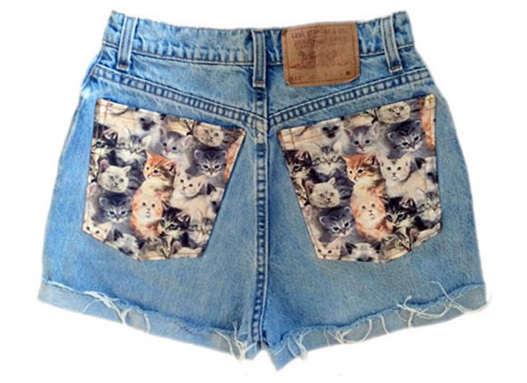 cats shoes levi's cat shorts kitty shorts kitties kitty pants cat pants i love cats cat lady levis cut offs cat levis cat material