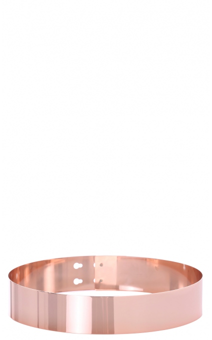Kingdom come belt in copper