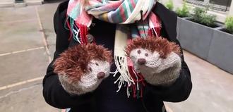 gloves hedgehog cute winter outfits pet animal girly kawaii