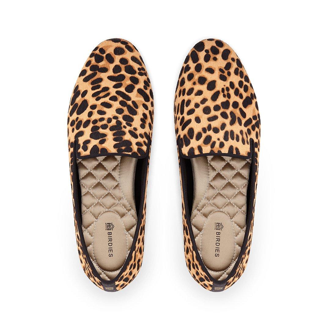 The Starling - Cheetah