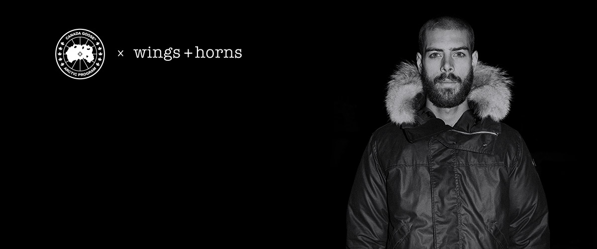 Wings   Horns | Canada Goose
